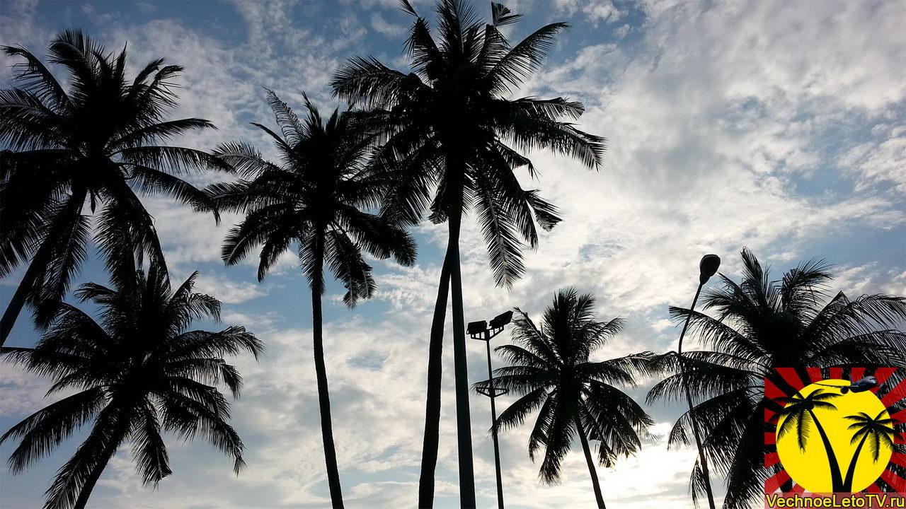 Пляж-Паттайя