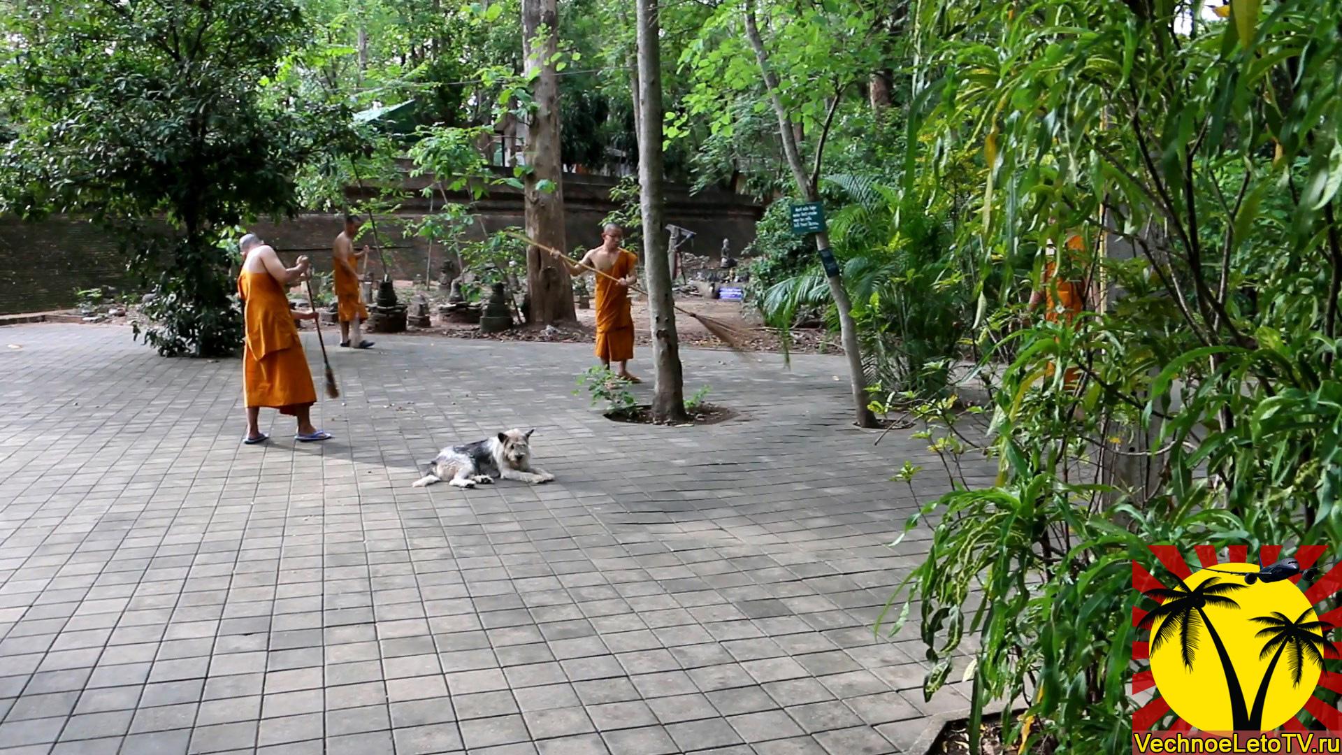Храм-Тайланд-Чиангмай
