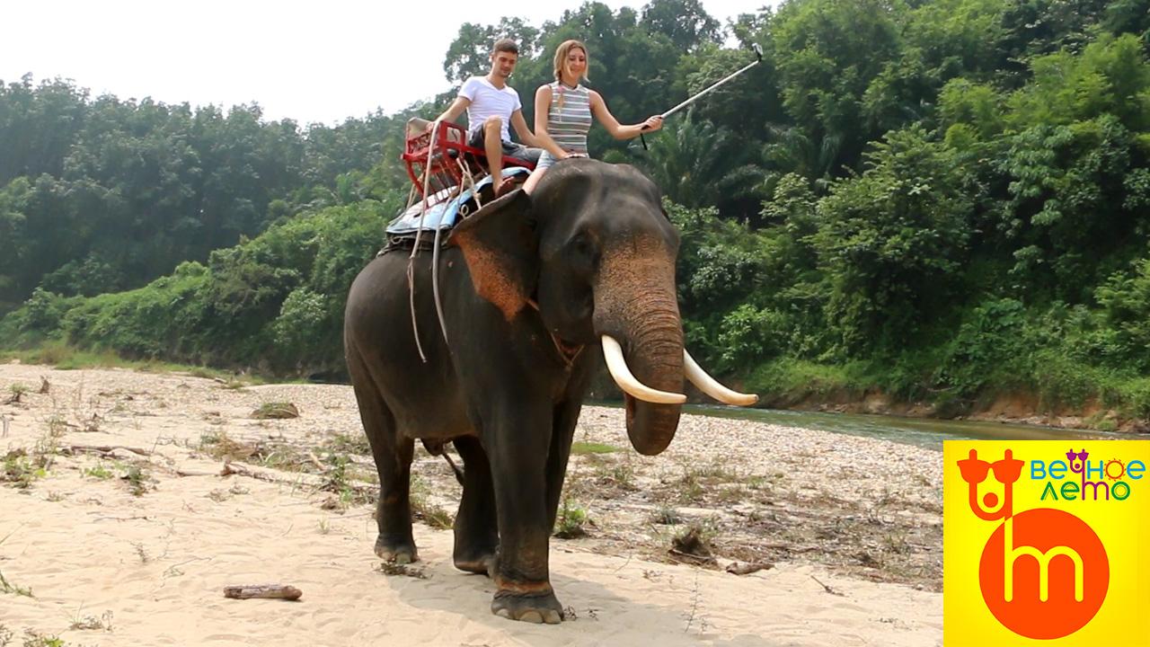 Катание-на-слонах-Пхукет