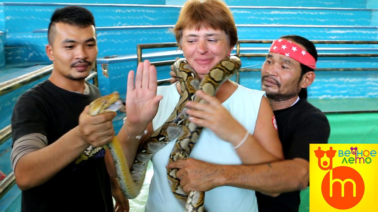 Змеиное-шоу-Паттайя