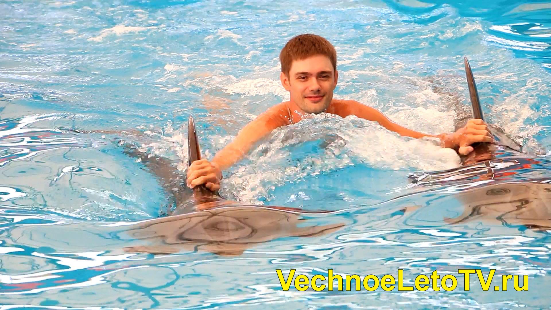Дельфины в Тайланде
