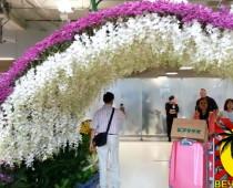 Аэропорт Суварнапхуми, Паттайя и отель ZING